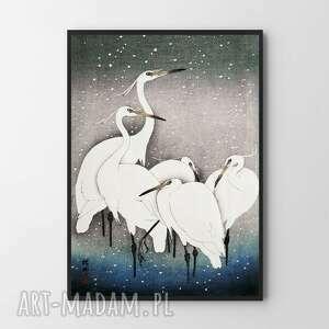 plakat obraz białe ptaki 40x50
