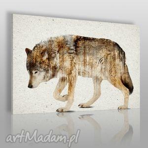 obraz na płótnie - wilk 120x80 cm 14201, wilk, zwierzę, skandynawski, nowoczesny