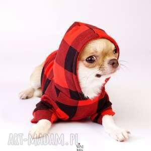 bluzy bluza z kapturem dla psa, bluza, ubranie, pies, szczeniaka, ciepła