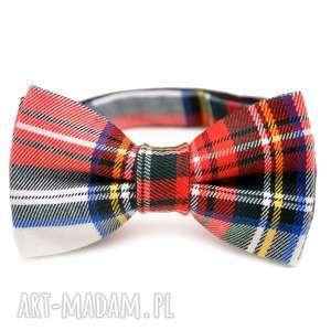 muchy i muszki mucha nice flannel, mucha, impreza, urodziny, imieniny, prezent