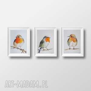 wyjątkowy prezent, ptaki - trzy akwarele, akwarele, papier, ptaki