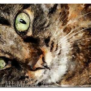 aleobrazy obraz xxl kot 2 -120x70cm design na płótnie kotek, obraz, kot, kotek