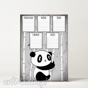 Plan lekcji. Panda, dziecko, panda, miś, szkoła, lekcje