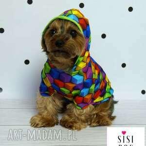 Ubranie dla psa, bluza, piesek, pies, ubranko, kurtka, york