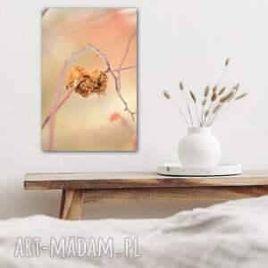 pastelove love - foto obraz 50x70cm, fotografia, przyroda, heart, natura