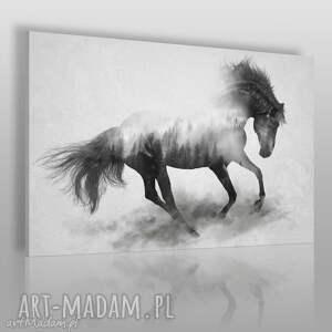 obraz na płótnie - koń galop 120x80 cm 45301, koń, zwierzę, galop, dziki, las