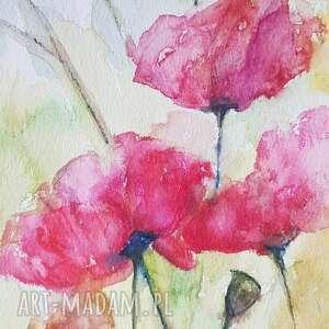 maki-akwarela formatu a5, akwarela, kwiaty, łąka, maki, papier