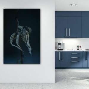 in blue - foto obraz 50x70cm, kwiaty, przyroda, noc, natura, obraz