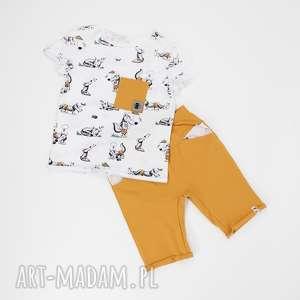 Spodenki i koszulka liski, musztardowy, rudy