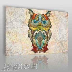 vaku dsgn obraz na płótnie - kolorowa sowa 120x80 cm 25301 , sowa, kolorowy, ptak