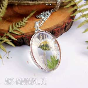 stokrotka polna - szklany wisiorek - stokrotka, kwiaty, suszone, terrarium, witrażowe