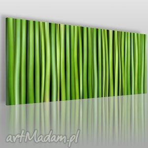 obraz na płótnie - bambus panorama 120x50 cm 06601, bambus, pędy