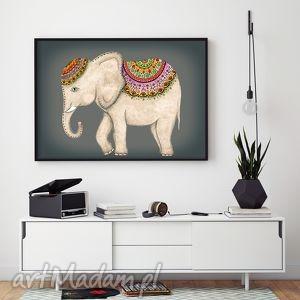 Słoń 50x70cm, słoń, słonik, indyjski, plakat, ilustracja