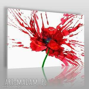 Obraz na płótnie - KWIAT MAK CZERWONY 120x80 cm (67401), mak, kwiaty, rośliny