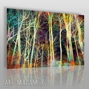 obraz na płótnie - noc drzewa gałęzie 120x80 cm 48301, drzewa, gałęzie, noc, las