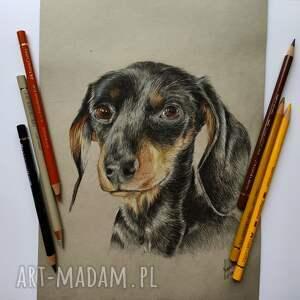 rysunek pies jamnik, prezent oryginalny, czarny dzień psa 1