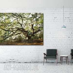 obraz drzewo 35 - 120x70cm na płótnie do salonu, obraz, drzewo, płótno