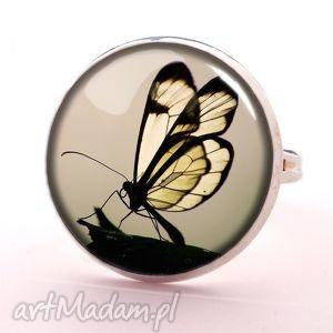 motyl w sepii - pierścionek regulowany - szare pierścionki, elegancki