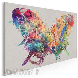 obraz na płótnie - motyl kolorowy sztuka 120x80 cm 72901, motyl, owad