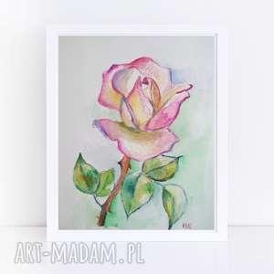 róża-akwarela formatu 18/24 cm, róża, papier, akwarela, kredki