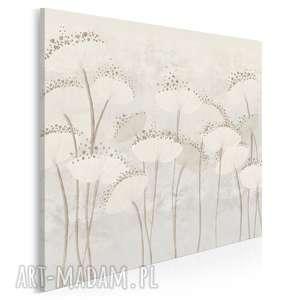 obraz na płótnie - dmuchawce kwiaty kremowy w kwadracie 80x80 cm 90802