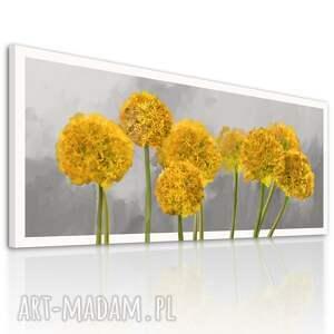 obraz do salonu drukowany na płótnie z kwiatami, żółte kwiaty czosnku 150x60cm