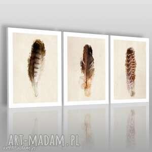 obraz na płótnie - piÓra tryptyk - 3x50x70 cm 01901 - pióra, ptak