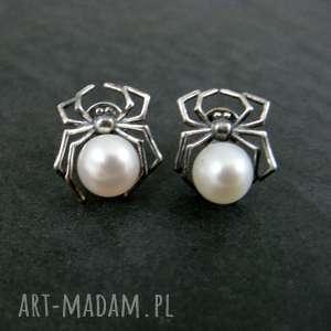 pająki z perłą
