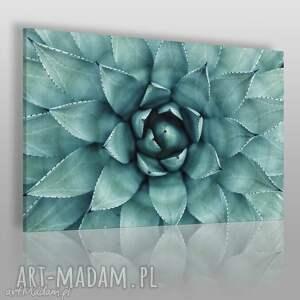 Fotoobraz na płótnie - TURKUSOWY KWIAT 120x80 cm (901801), fotoobraz, kwiat, natura