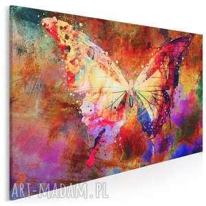 Obraz na płótnie - MOTYL SKRZYDŁA KOLOROWY 120x80 cm (70601), motyl, skrzydła
