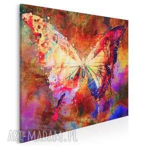 obraz na płótnie - motyl skrzydła kolorowy w kwadracie 80x80 cm 70602