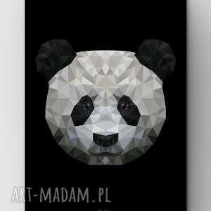 panda black, grafika, plakat