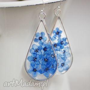 925 srebrne kolczyki XL ♥ Niezapominajki , niezapominajki, kwiaty, kolor, niebieski