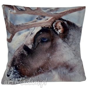 poduszki poduszka dekoracyjna renifer, dekoracyjna, zimowa, świąteczna