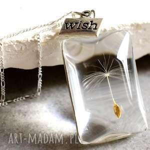 srebro 925 ♥ Dmuchawiec Naszyjnik , dmuchawiec, szkło, srebro, wish, życzenie