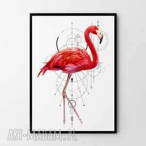 plakat obraz flaming 61x91 cm, flaming, do salonu, salon, prezent, różowy