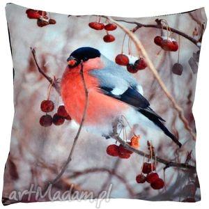 poduszka dekoracyjna gil mały, poduszka, zwierzęta, gil, zimowa, świąteczna dom