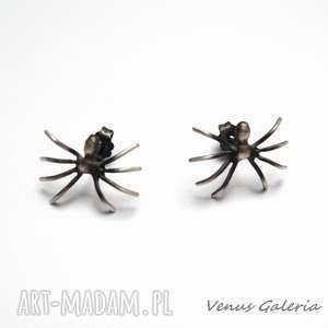 kolczyki pajączki szare - srebrne, kolczyki, venus, pająki, srebro, oksyda