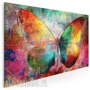 obraz na płótnie - motyl kolorowy 120x80 cm 59801, motyl, kolorowy, grunge