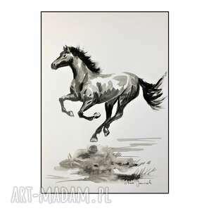 koń ii, koń, konik, grafika