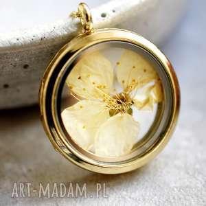 925 pozłacany medalion kwiat wiśni - łańcuszek, srebro
