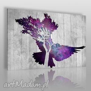 obraz na płótnie - gołąb 120x80 cm 33401 , gołąb, ptak, deski, drewno, skrzydła