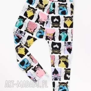 Kocie dresy, pumpy, spodnie, dres, dziecko, koty