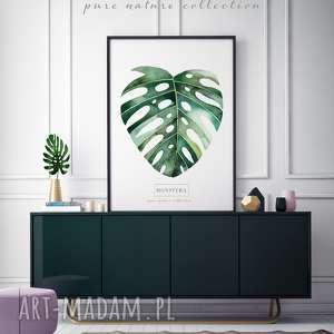 Plakat a3 liście plakaty fajnymotyw wystrój, wnętrze,