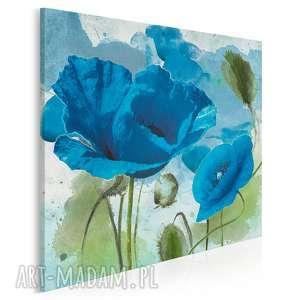 obraz na płótnie - niebieskie maki 80x80 cm 12201, maki, kwiaty, rośliny