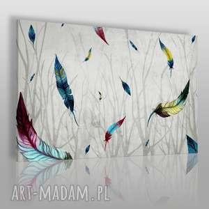 obrazy obraz na płótnie - pióra gałęzie 100x70cm 46701/100x70, pióra