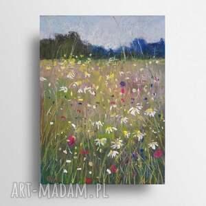 paulina lebida łąka-praca wykonana pastelami suchymi, łąka, papier, obraz