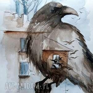 gawron akwarela artystki adriany laube - obraz na papierze a3, gawron, ptak