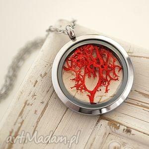 ♥ Jesienne drzewo Medalion 4 pory roku, mech, pora, rok, medalion, czerwień, natura