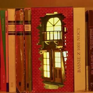 dekoracje książkowa alejka - dekoracja na regał z książkami, książki, książka